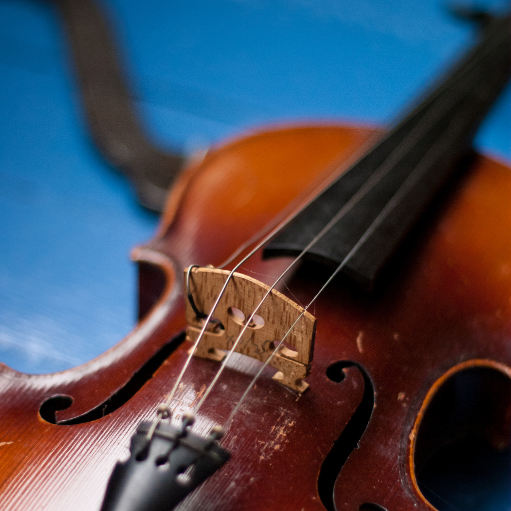 violin_Robert S. Donovan_Flickr
